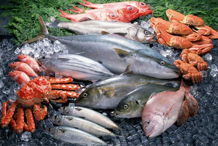 какие виды рыб